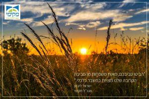 עמותת מקימי - כלכלה נבונה,משעבוד לגאולה